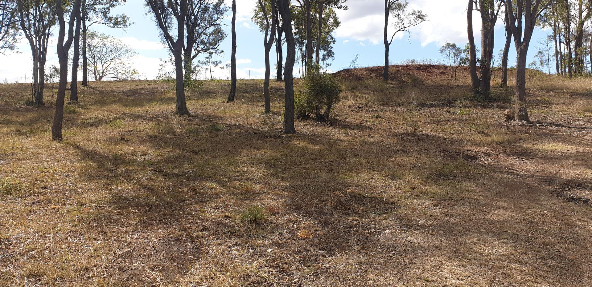 135 Melvilles Road, Maroondan QLD 4671, Image 2