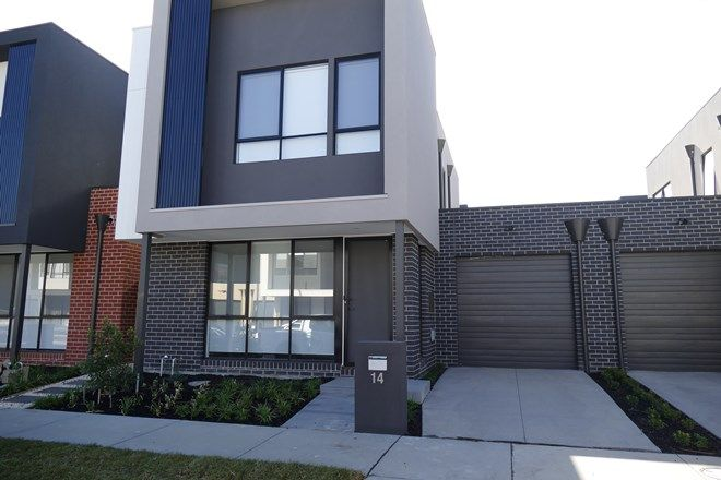 Picture of 14 Dianella Street, CLAYTON VIC 3168