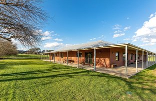 Picture of 1556 Olympic Highway, Brucedale NSW 2650
