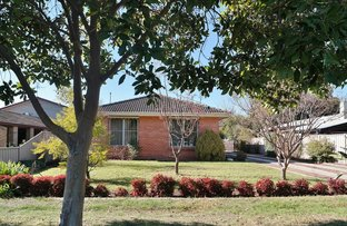 Picture of 62 Crossen Street, Echuca VIC 3564