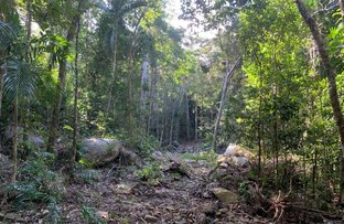Picture of Lot 500/SP262378 Bloomfield Road, Bloomfield QLD 4895