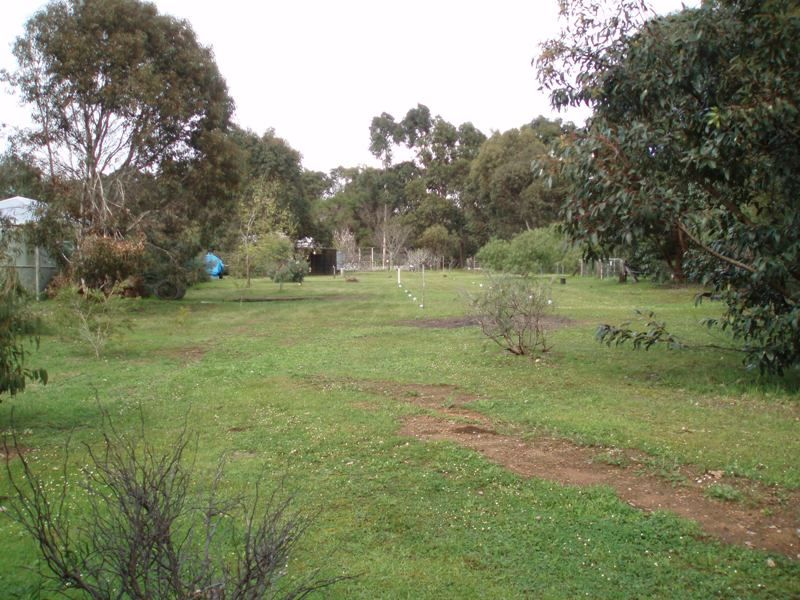 140 (lot 1) Green Hill Road, Augusta WA 6290, Image 1