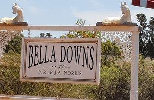 "Picture of ""Belladowns"" Browns Lane, Condobolin NSW 2877"