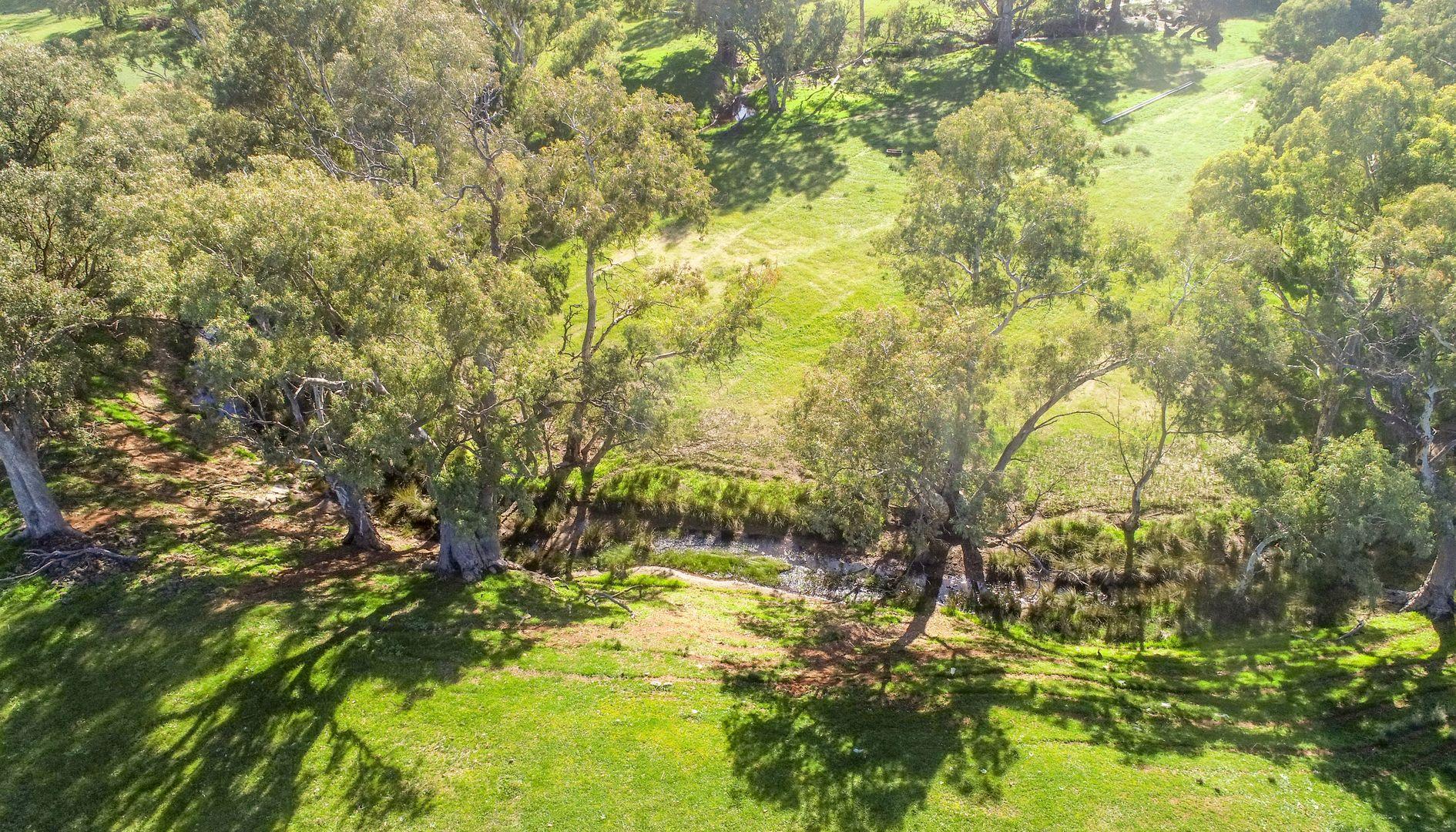 Sections 365 & 366 Survey Road, Melrose SA 5483, Image 2