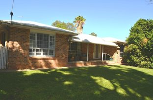 Picture of 146 GWYDIR STREET, Moree NSW 2400