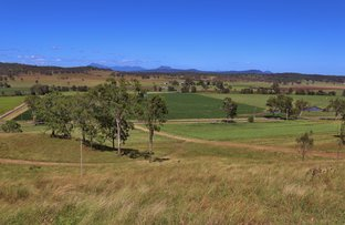 Picture of Christmas Creek Road, Christmas Creek QLD 4285
