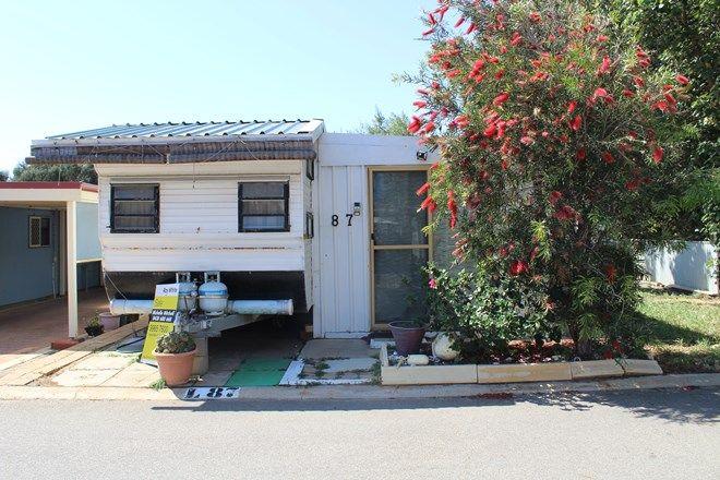 Picture of Site 87, 463 Marine Terrace, GERALDTON WA 6530
