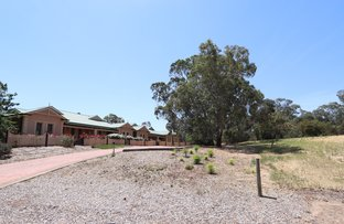 Picture of 6/36  Brown Street, Willaston SA 5118