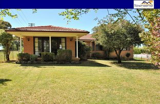 36 Carcoar Street, Spring Hill NSW 2800