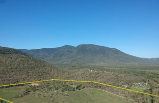Picture of 149 Haberecht Road, Majors Creek QLD 4816