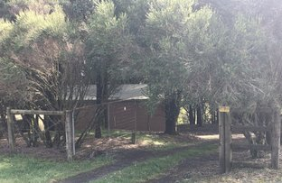 Picture of 58 Gardner Street, Beech Forest VIC 3237
