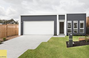 Picture of 165 The Heights Boulevard, Pimpama QLD 4209