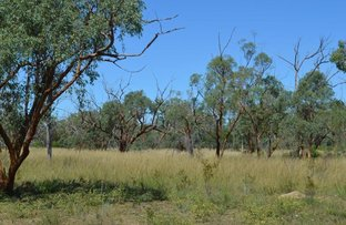 Picture of Timaru, Torrens Creek QLD 4816