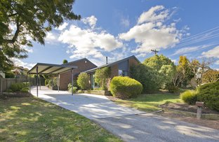 9 Hinchcliffe Place, Spence ACT 2615