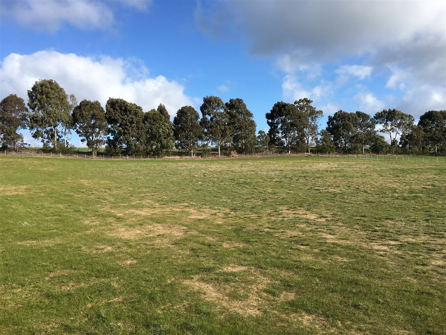 Lot 2, 33 Jollys Road, Teesdale VIC 3328, Image 1