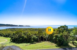 Picture of Coquette Point QLD 4860