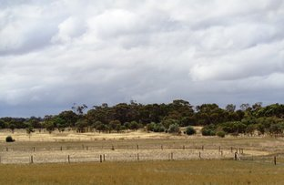 Picture of Lot 2, 102 PARKERS ROAD, Gawler Belt SA 5118