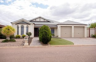 Picture of 7 SHOAL COURT, Whyalla SA 5600