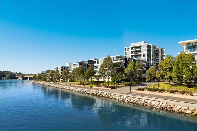 Picture of 44 Shoreline Drive, RHODES NSW 2138