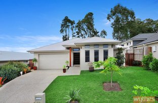 Picture of 13 Cordwood Drive, Cooroy QLD 4563
