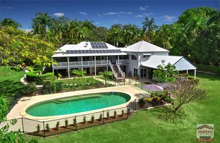 Picture of 13 Needham Ct, Kiels Mountain QLD 4559