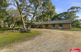 Picture of 785 DARLIMURLA ROAD, Boolarra VIC 3870