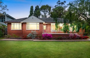 Picture of 38 Grigg Avenue, North Epping NSW 2121