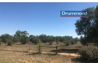 Picture of Lot 3 Belmore Street, Howlong NSW 2643