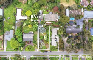 Picture of 37A Olive Grove, Boronia VIC 3155