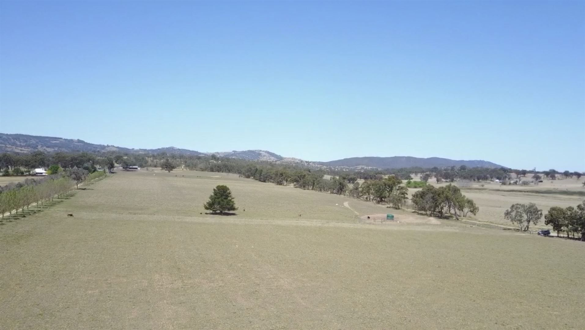 Lots 132 to 137 Haddocks Road, Tenterfield NSW 2372, Image 2