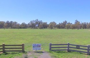 Picture of 223 Riverside Drive, Narrabri NSW 2390
