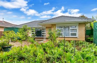 Picture of 71 Lewis Street, South Brighton SA 5048