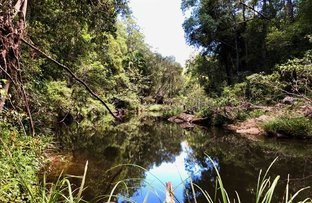 Picture of 141 Staghorn Drive, Austinville QLD 4213