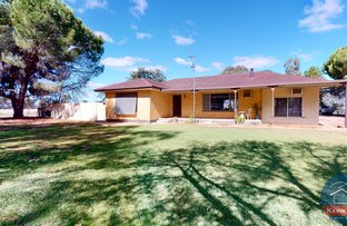 Picture of 1980 Midland Highway, Cosgrove South VIC 3631