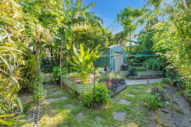Picture of 12 Dali Court, HEATLEY QLD 4814