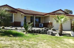 Picture of 55 La Fayette Blvd, Bibra Lake WA 6163