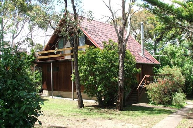 92 Rental Properties in Armidale, NSW, 2350 | Domain