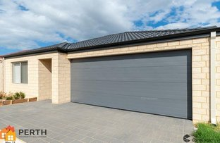 Picture of 7 Belches Loop, Seville Grove WA 6112