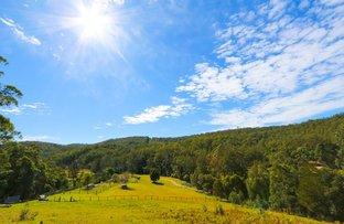 635 Upper Myall Road, Warranulla NSW 2423