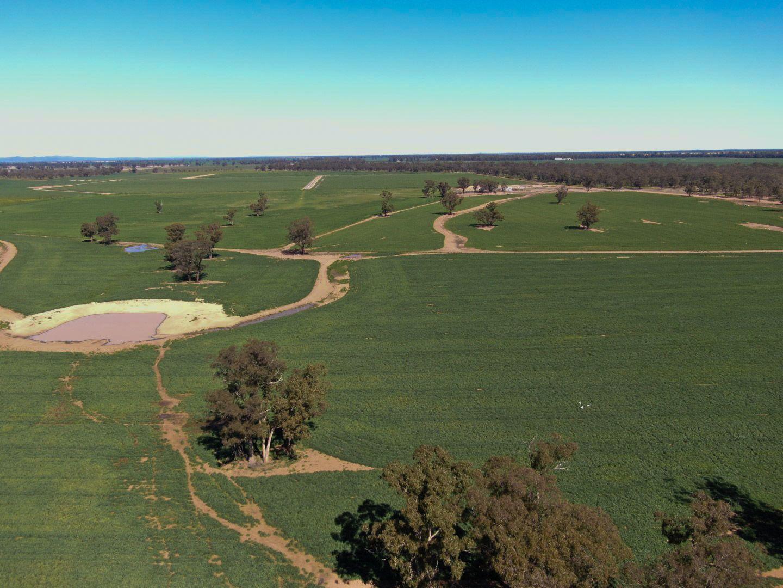 914 Burroway Road, Narromine NSW 2821, Image 0