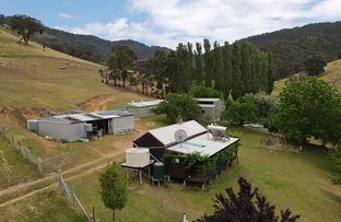 Picture of 676 Bald Hills Creek Rd, Tongio VIC 3896