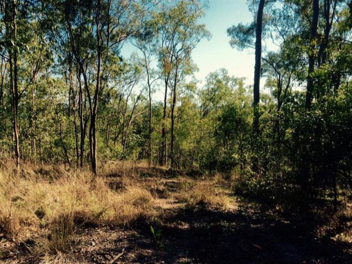 Lot 104 Short Cut Road, Delan QLD 4671, Image 2