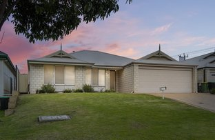 Picture of 113 Wittenoom Street, Collie WA 6225
