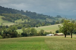 Picture of 2209 Allyn River Road, Allynbrook Via, Gresford NSW 2311