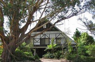 41 Farnells Road, Katoomba NSW 2780