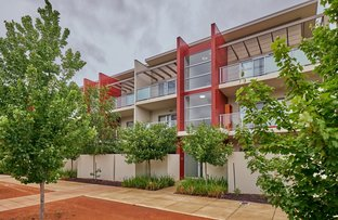 Picture of 115/311 Flemington Road, Franklin ACT 2913