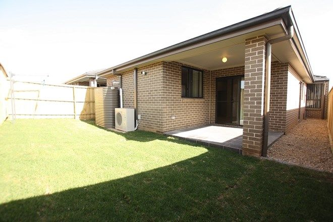 Picture of 14 Booth Street, GREGORY HILLS NSW 2557