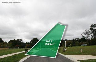Picture of Lot 5 Dianella Court - off Goldies lane, Woodend VIC 3442