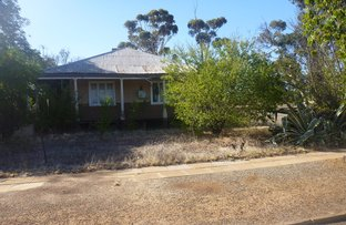 Picture of 64 Taylor Street, Dumbleyung WA 6350