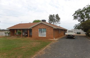 Picture of 62 Tullamore Road, Peak Hill NSW 2869